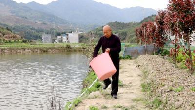 【农业动态⑧】何铁牛:鲈鱼特色养殖 致富好路子