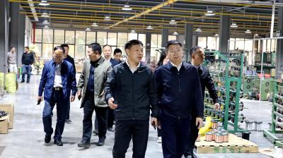 蒋星华到通城调研电子线材产业和林下竹产业发展情况