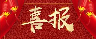 喜报!通城11家企业被纳入2021年湖北省农业产业化重点龙头企业名单