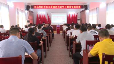 通城县政府办公室、马港镇联合开展党史学习教育