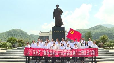 人行咸宁市中心支行来通城开展主题党日活动