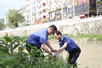 通城县城市管理执法局:全员参与洁河活动 维护河道水清岸绿