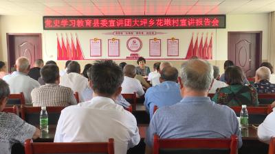 刘中英到大坪乡花墩村作党史学习教育专题宣讲报告