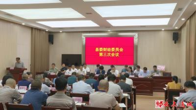 中共通城县委财经委员会第三次会议召开