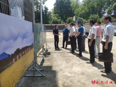 中钢集团武汉安全环保研究院来通城开展乡村振兴调研