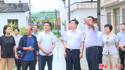 吴刚到通城县调研非煤矿山生态修复和地质灾害防治工作
