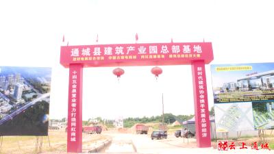 """【民营企业有话说③】建筑产业园为何""""梦难圆"""""""