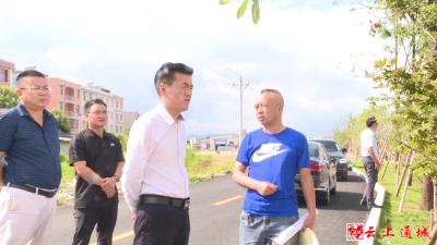 杨修伟调研生态环境保护工作