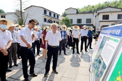湖北省村庄规划编制工作推进会在通城县召开