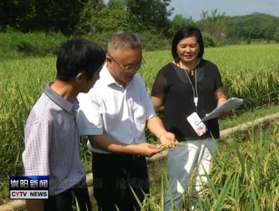 咸宁日报:指导灾后农业恢复生产