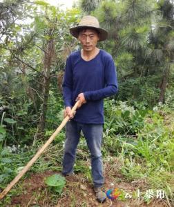 脱贫之星刘书松:发展楠竹产业 好日子节节高