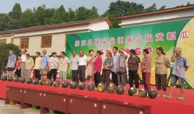 """豪横!桂花泉镇24.4斤""""瓜王""""卖出11100元"""