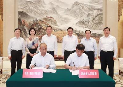 应勇王晓东与华润集团董事长王祥明座谈,将在这些领域深化拓展合作!