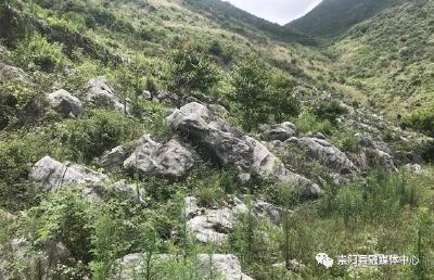 """崇阳:""""六大""""活动强谋划 打造雨山国家石漠公园"""