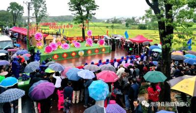 超精彩!过节了!崇阳县2020年中国农民丰收节开幕!
