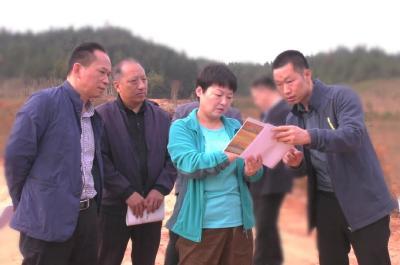 杭莺、郑俊华专题调研全县农业、林业、水利项目建设