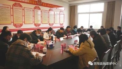 """王玲到崇阳县开展""""深化代表行动,发挥代表作用""""调研活动"""