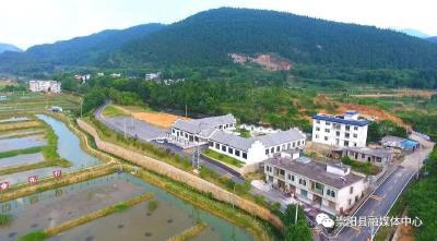 杨良锋到崇阳县调研产业项目建设、乡村振兴工作