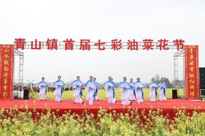 美!崇阳县青山镇首届七彩油菜花节开幕  3000亩花海引爆打卡热潮