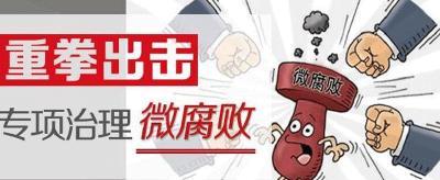 """崇阳:以巡视整改为契机严查民生""""微腐败"""""""