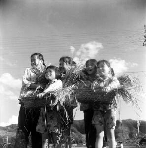 【图说通山】百集历史图文第七十五集:穷人的孩子早当家
