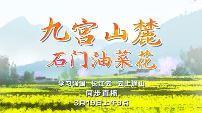 """居家抗疫 不负春光!""""九宫山麓•石门油菜花"""" 直播预告"""