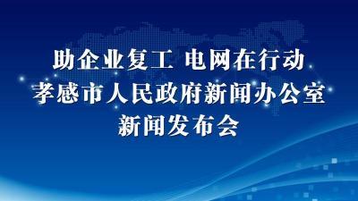 """【直播】2020年""""助企业复工 电网在行动""""新闻发布会"""