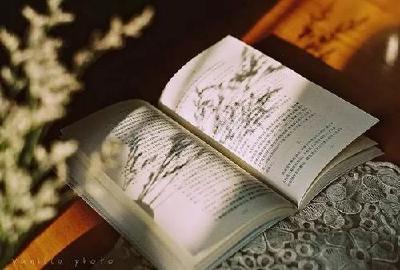 【九宫文学】阅读的魅力