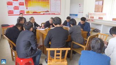 长江云——V视丨问需于民!通山县领导调研软弱涣散村党组织整顿工作
