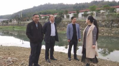 V视 | 吴柏林深入乡镇开展河湖库长制巡查
