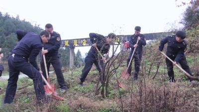 咸宁日报——通山青年志愿者开展义务植树活动