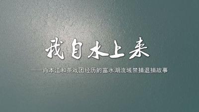 长江云——禁捕退捕故事——我自水上来