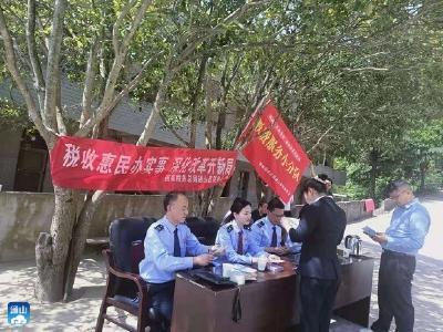"""【我为群众办实事】县税务局""""税惠春风""""进花海"""
