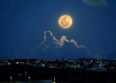 【凤池夜读】第459期丨方玲朗读《最好的月色我也曾看过》
