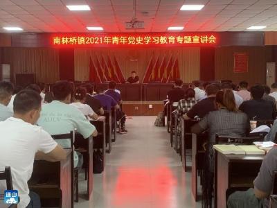 【党史学习教育】南林桥镇:开展党史学习教育展现青年昂扬风采
