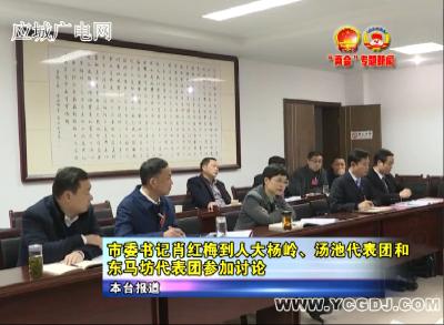 市委书记肖红梅到人大杨岭、汤池代表团和东马坊代表团参加讨论
