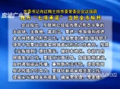 """市委书记肖红梅主持市委常委会会议强调  践行""""七项承诺"""" 当好全市标杆"""
