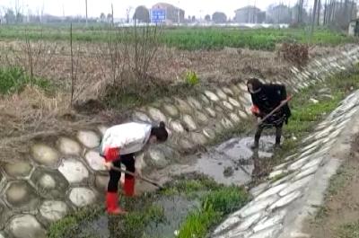 东马坊王许村:开展环境整治 切断病毒传播途径