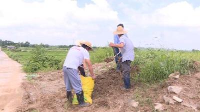 抗洪排涝有举措 巡查值守不断线 应城西部2乡镇防汛形势稳固