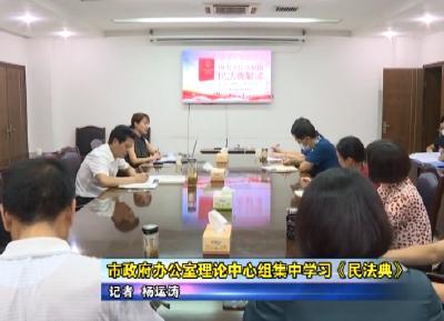 市政府办公室理论中心组集中学习《民法典》