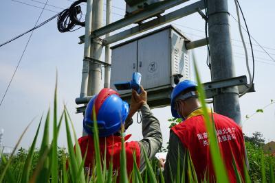 《应城供电:你用电 我用心》  市供电公司全力以赴做好迎峰度夏保电工作