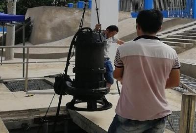 应城:确保排渍设备应修必修、能用好用