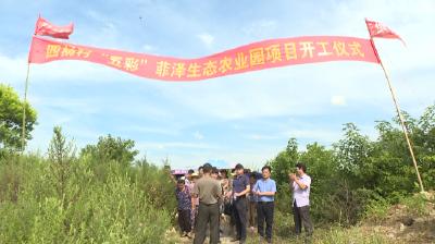 """应城四里棚 """"五彩""""生态农业园项目正式开工"""