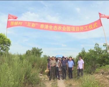 """四里棚办事处""""五彩""""生态农业园项目正式开工"""