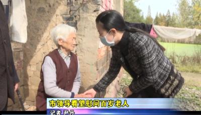 市领导看望慰问百岁老人