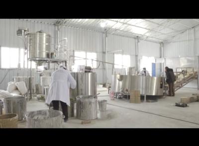 《聚力打造中国优质糯稻之乡》春华养生豆皮:让应城传统美食焕发新活力