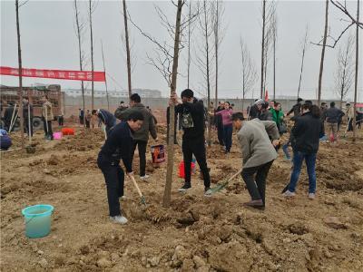 市质监局积极参加义务植树活动
