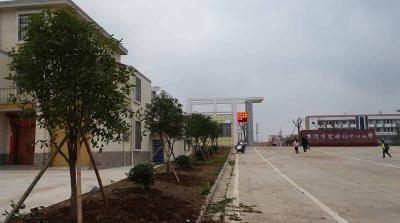 棠棣镇中心小学倾力打造绿色园林校园
