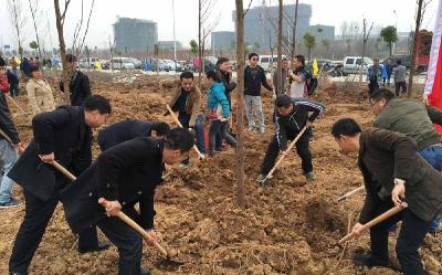 我为涢城添新绿——市教育局开展义务植树活动