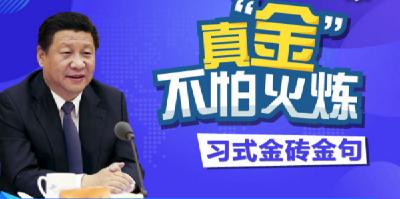 """【原声图解】真""""金""""不怕火炼——习式金砖金句"""